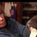 Rescuing Oskar the otter