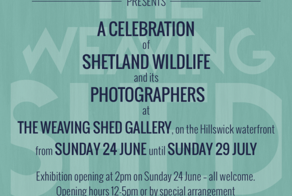 Wildlife photography exhibition